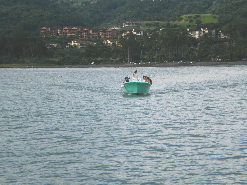 purjekaga merel