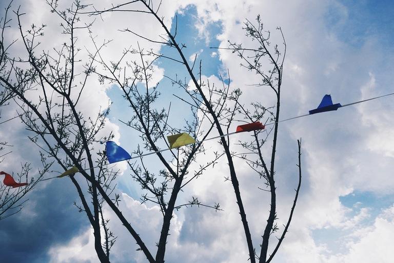 tuulelipud