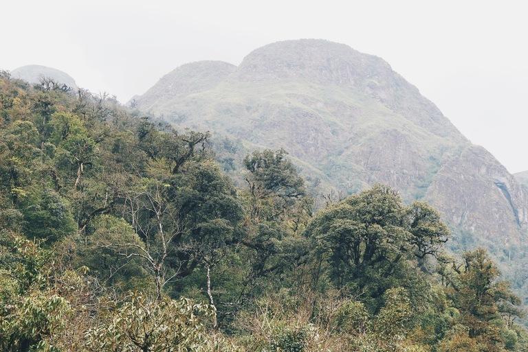 vietnami loodus
