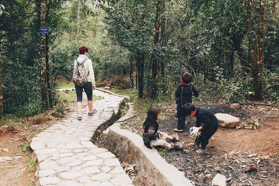 vietnami ilu