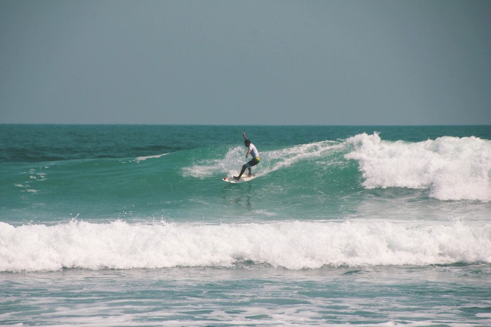 surfarid