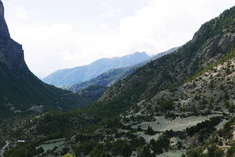 mägimatk