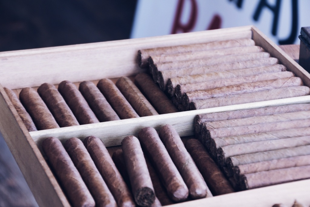 kaimanissarte sigar