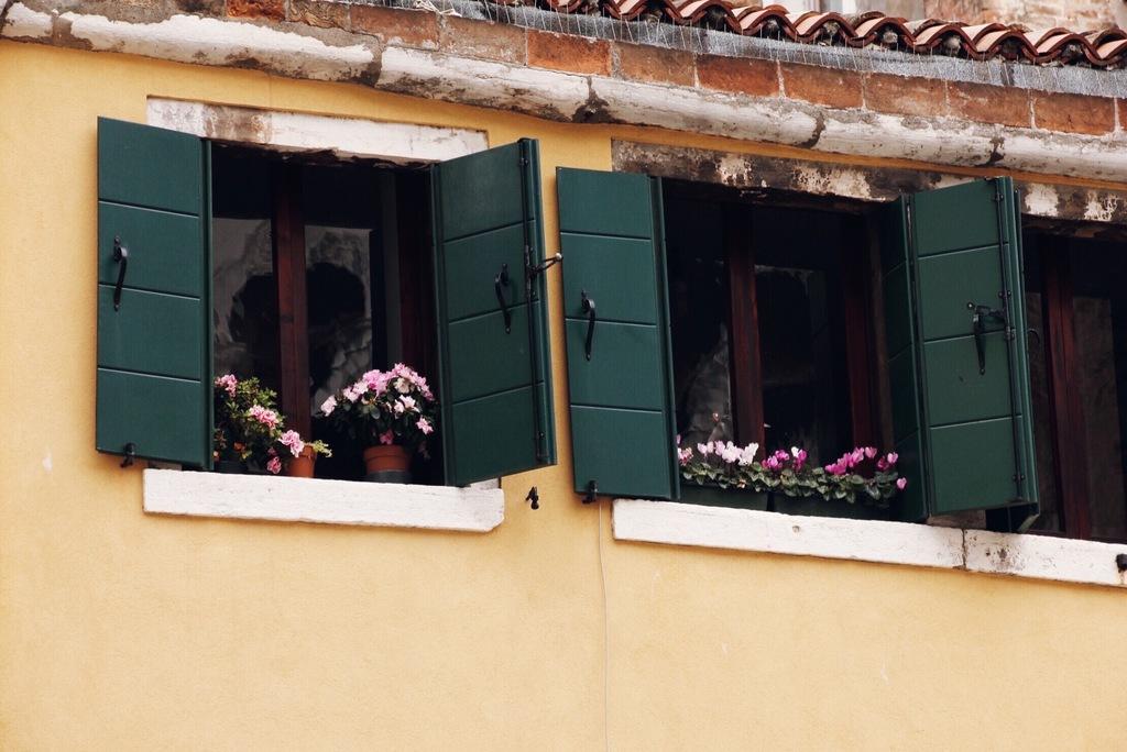 aknalaud ja lilled