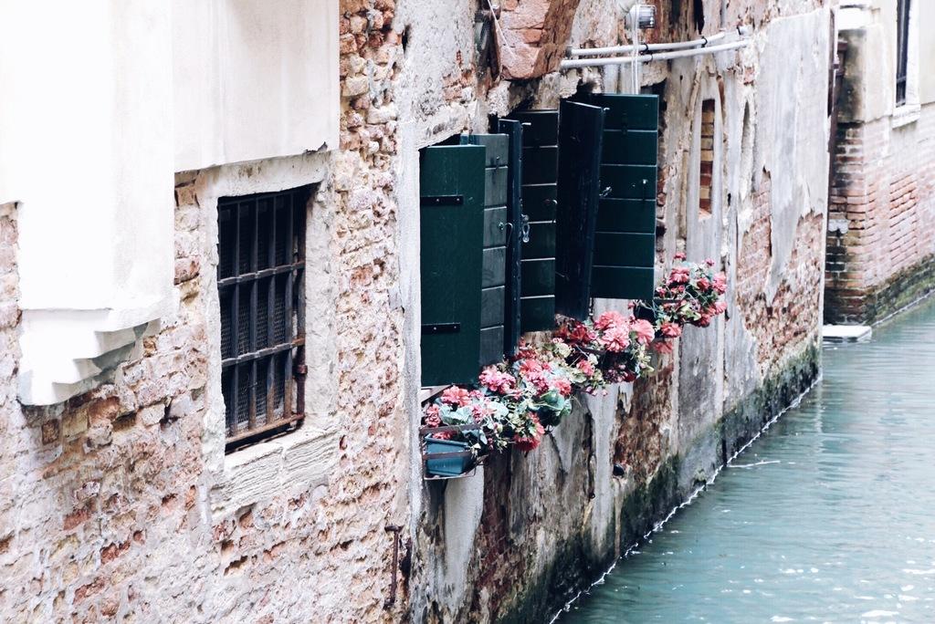 lilled ja aknalaud