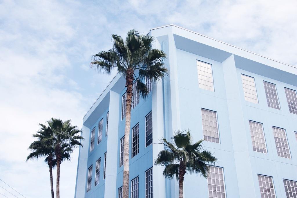 sinine maja ja palmid