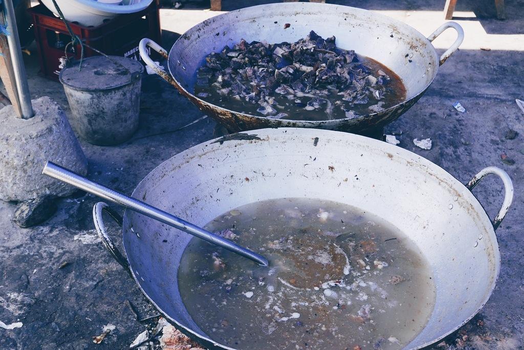 supp tulel