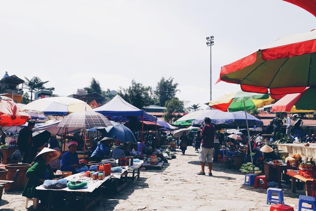turg vietnamis